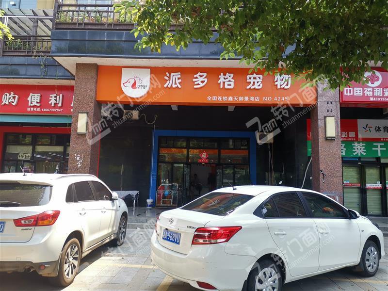 低价急转喜盈门范城120平宠物店
